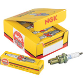 NGK Spark Plug Set, 10 Pcs.