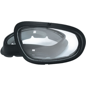 REPLACEMENT LENS HELLY
