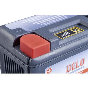 Buy DELO LITHIUM-ION BATTERY PLFP-14R 12V/4AH,CCA 280A