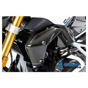 Carbonteile für BMW R1250 R-RS 19- Ilmberger Motorrad