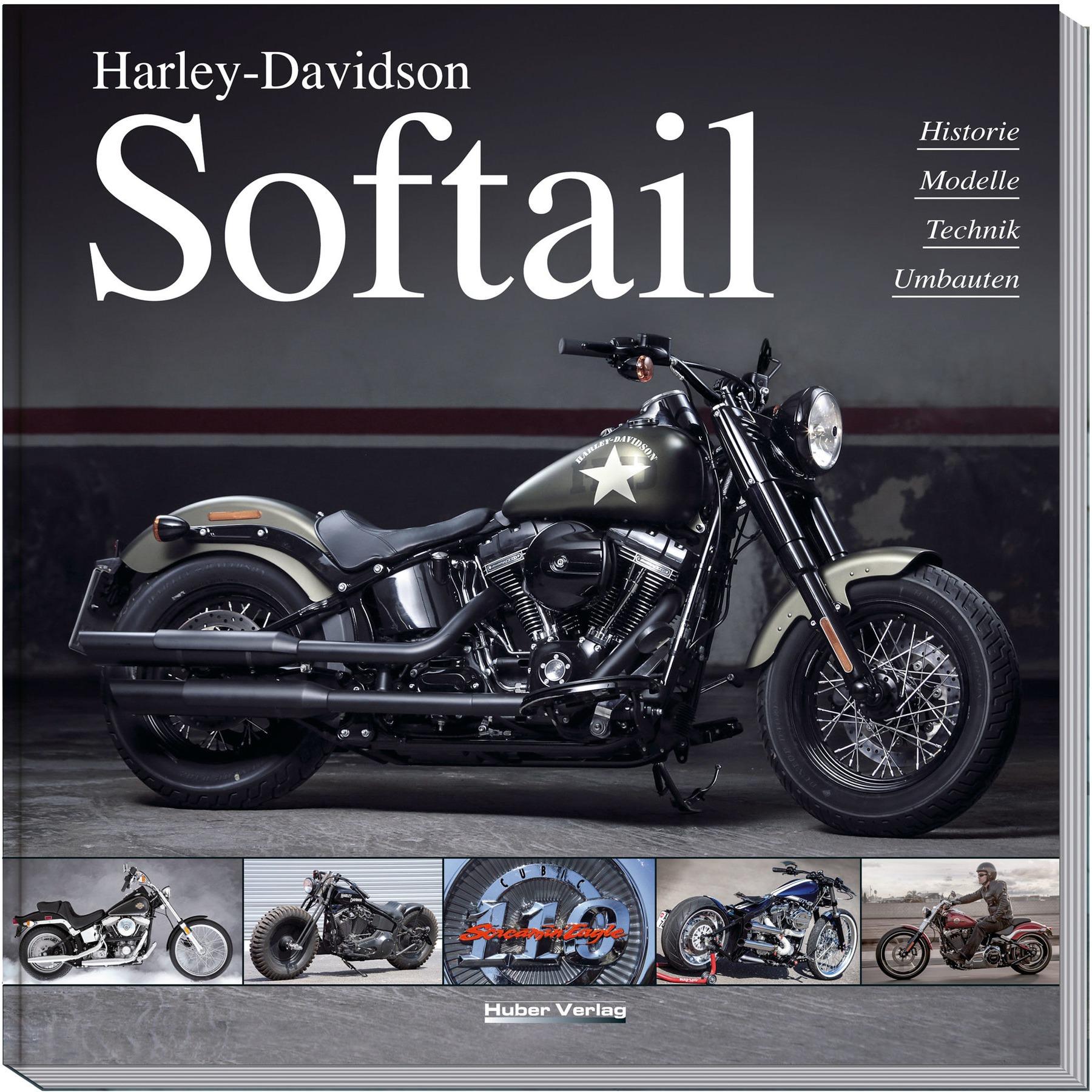 Heritage, Custom, Fat Boy, Deluxe, Night Train, Springer Harley Davidson Softail Saddlebag Supports for 84